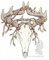 Deer Skull with vines - color by arikla