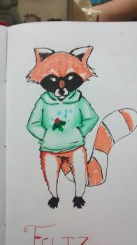 racoon by Wesdot