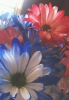 Red, White, and Blue by xKailtin