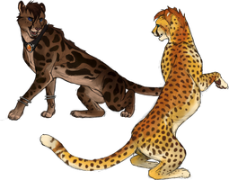 Iberius And Flynn by CheeTree