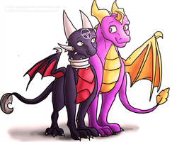 -Collab- Spyro and Cynder by hannahspangler