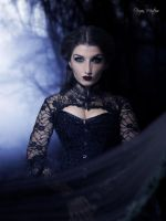 La Viuda Negra by frozenmistress