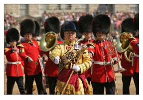 Trooping The Colour - 3 by syphonvector