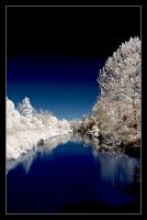 Creek in false color infrared by snailfan-man