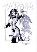 Zatanna sketch by qualano