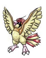 Pidgeotto by Animal-and-anime-lvr