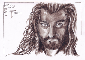 Thorin Oakenshield by AluStaire