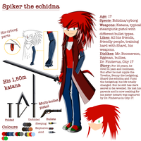Spiker the echidna .:REFERENCE:. by adrian1997