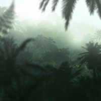 speed... jungle by regnar3712