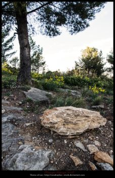 LandscapeRocks--Pinewood by Cendrayliss--Stock