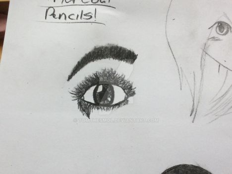 New charcoal pencils by Tomthesmol
