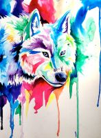 Rainbow Wolf 6 by Lucky978