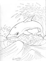 Its a Dolphin YAY by ChrisHolm