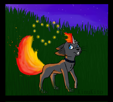 Befriending the Fire Flies (Contest Entry) by KinuKito