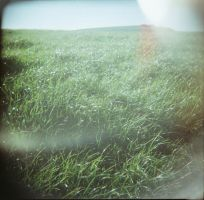 and fake plastic grass by a-sullen-girl