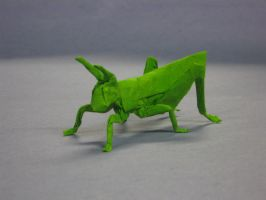 Grasshopper by Blue-Paper