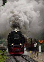 steam train by gAzroper