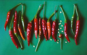 peppers by grezelle