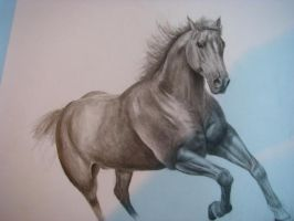 Horse pencil by bharcticcat