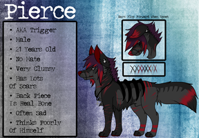 | Pierce 2014 Reference Sheet | by UltraViolentRainbows