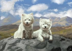 Westies by Sefikichi