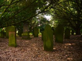Old Forest Cemetery 2012 19 by Dragoroth-stock