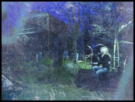 On a cemetery by Vilka6