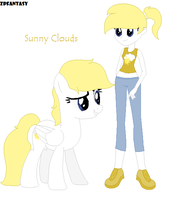 Sunny Clouds by ZPFantasy