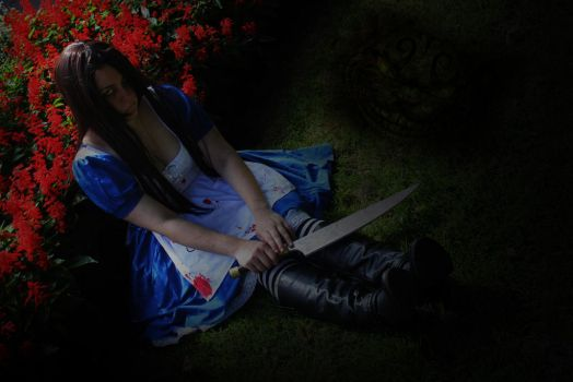 Alice - Vale of Tears by Dorchette