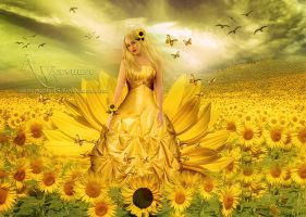 The sunflower by annemaria48