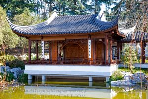 Huntington Library Oriental Gardens 2 by Pale-Recluse