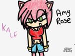 Amy Rose 2 by Knuxamyloverfan