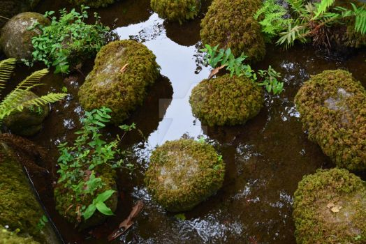 Moss Coated Grip on Reality by Sirenization