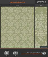 Damask Pattern 3.0 by Sed-rah-Stock