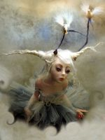 ballerina Doves F by cdlitestudio