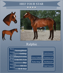 Ralphie Four Star by Spotted-Tabby-Cat