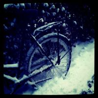 Bicycle by MisterDedication