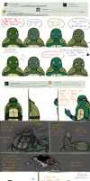 Ask the AU Turtles: 5 by 10yrsy