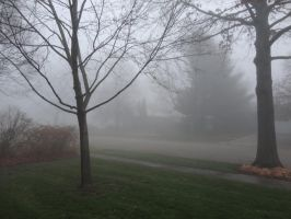 Foggy Day '12 01 by DNLnamek01