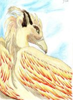 Gryphon by Feolan