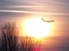Fly Into The Sunset by Bandico