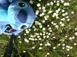 Stich and the Flower by rieta