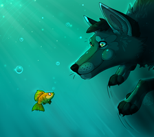 Improved DogFish by Kenny-BS
