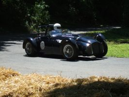 Fitch-Whitmore Jaguar at the Hairpin by Aya-Wavedancer