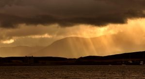 SunRays by Hamrani