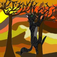 Shadowstar in the fall by shadow-the-dragoness