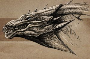 Dragon head sketch by Sythgara