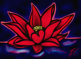 Lotus Glow by RubyPheonix
