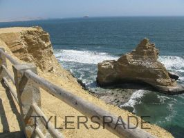 Paracas by Tylerspade