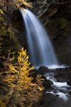 Gold waterfall by XavierJamonet